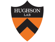 The Hughson Lab