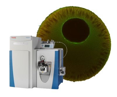 mass spectrometer and xenopus oocyte