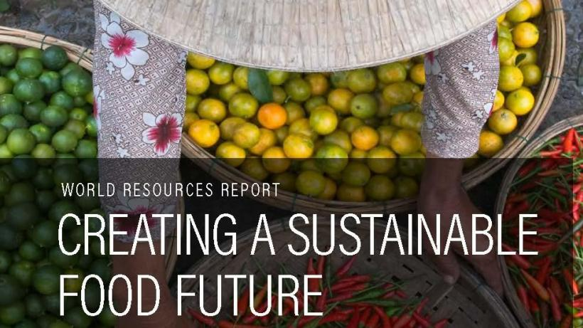 Cover of WRI Sustainable Food Future report