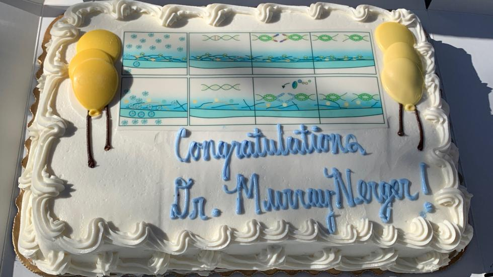 Dr. Murray-Nerger cake