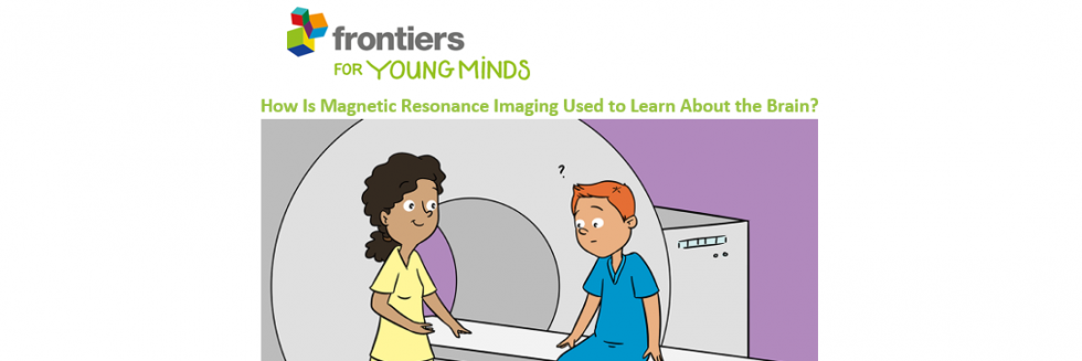 How Is Magnetic Resonance Imaging Used to Learn About the Brain?